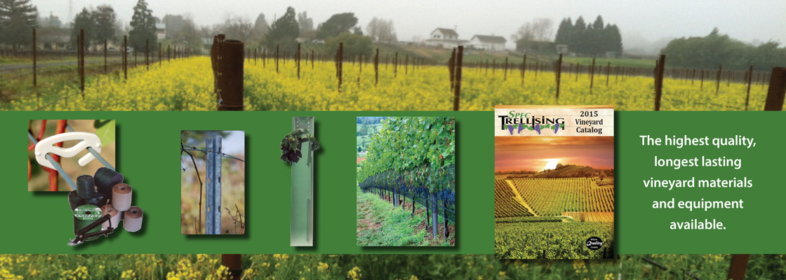 Vineyard-Slider-1120x400